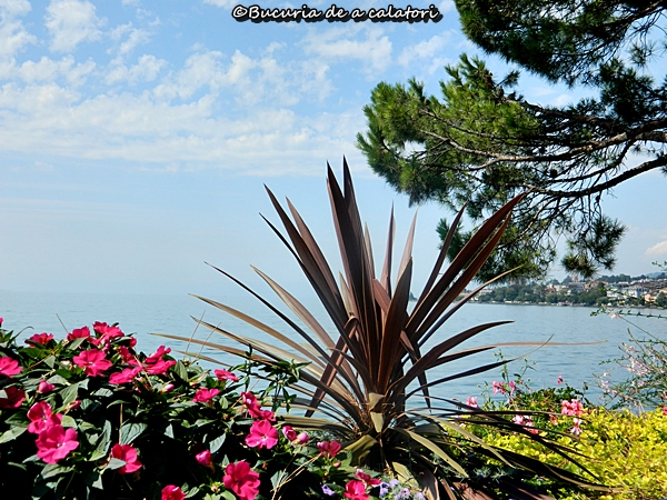 montreux.flori